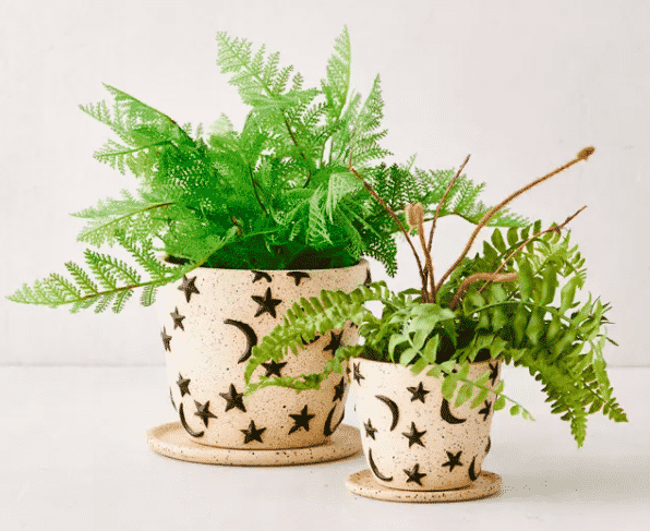 2 planters with star and moons from urban outfitters
