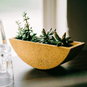 the totter planter from west elm