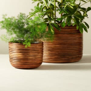 2 burnt rattan planters from cb2