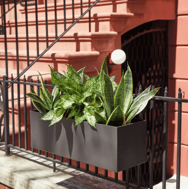 rail planter attached to gate with a snake plants potted inside