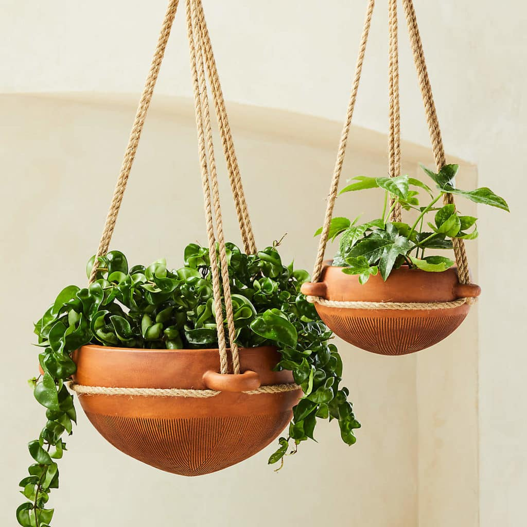 two hanging planters in terracotta bowls with a mix of plants potted inside
